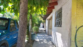 typical street in Sayulita