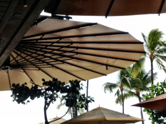A paper umbrella by the beach