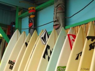 board8