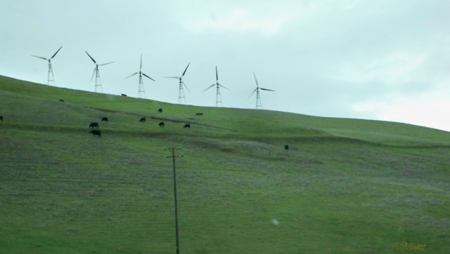 altamontwindmills4