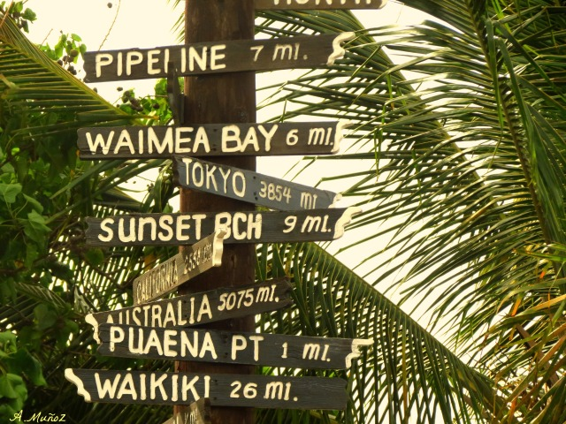 pointingthewayhawaii