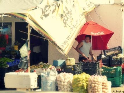 mercado23 vendor