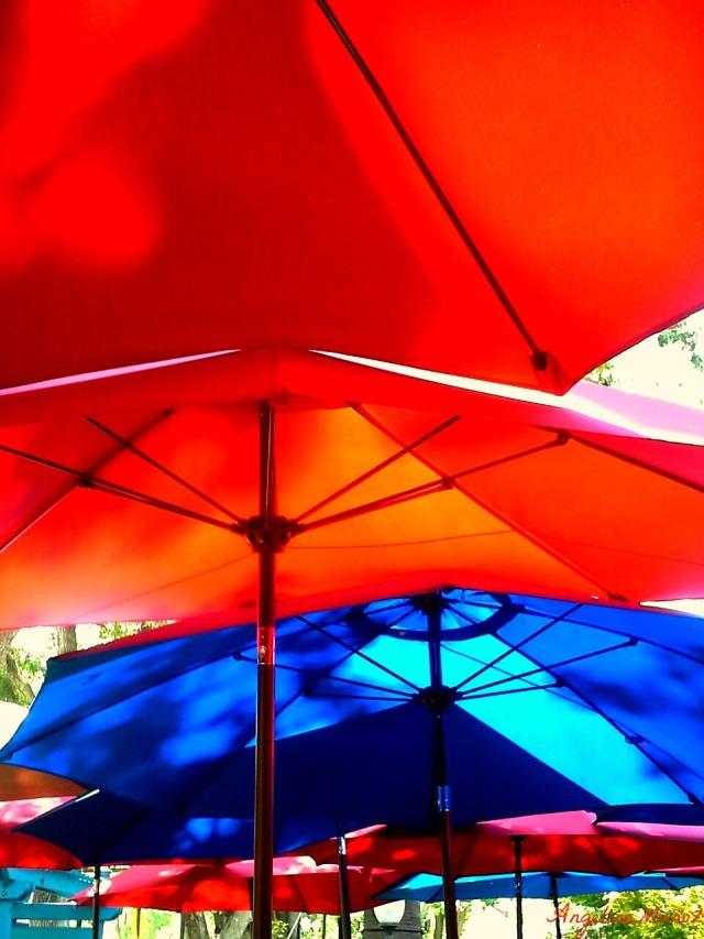 umbrellarainbow