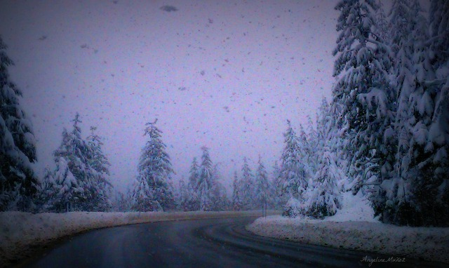 snowyroad2